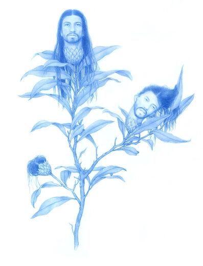 Zachari Logan, 'Chrysantha', 2017
