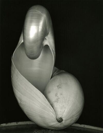 Edward Weston, 'Two Shells', 1927