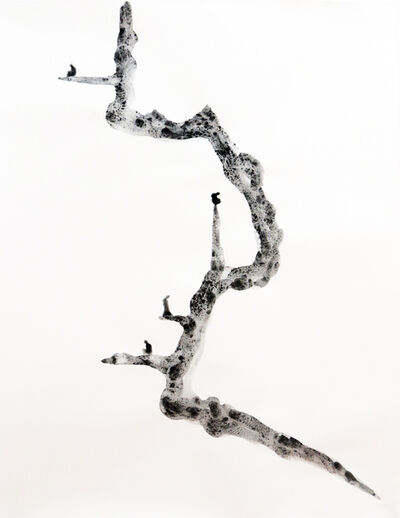 Yazid Oulab, 'Stylites #1', 2014