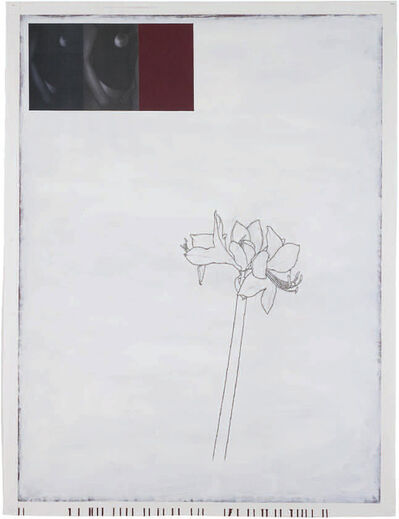 "Julião Sarmento, '""Woman, Plant, Bordeaux and White""', 2008-2009"