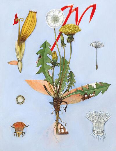 Fiona Ackerman, 'Dandelion Tea', 2019