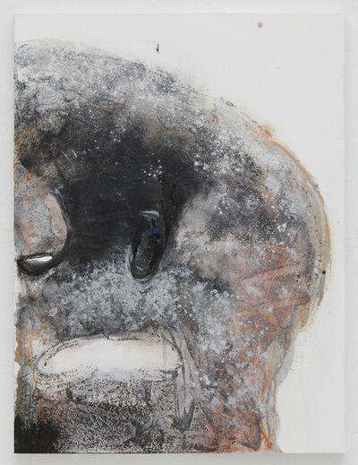 Suzanne McClelland, 'Mute D'