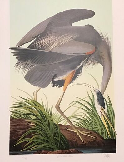John James Audubon, 'Great Blue Heron - Publisher's Proof (Plate 211) Signed, Numbered ', 1992