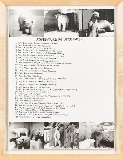 Mark Dion, 'Adventures in December', 1999