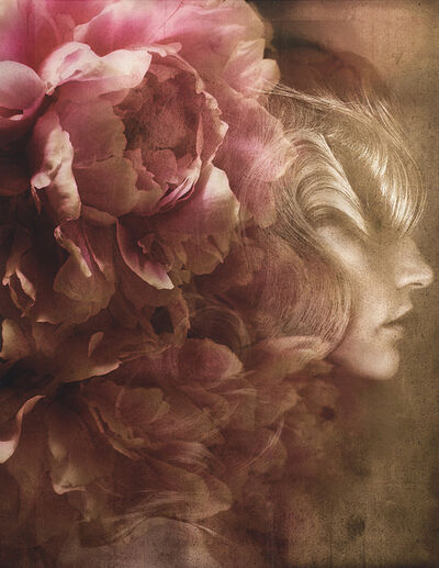 Giovanni Gastel, 'Flowers 02', 2011