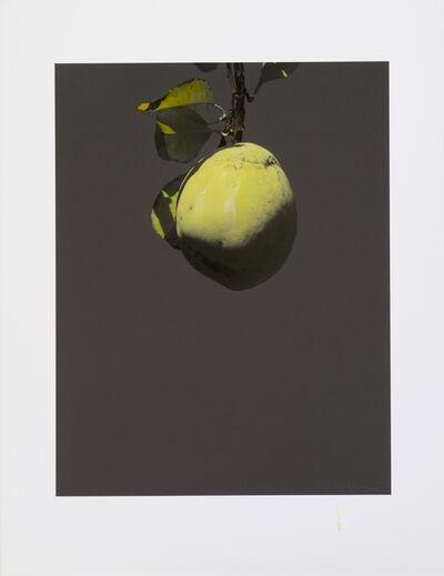 Honggoo Kang, 'Study of Green-Chinese Quince', 2012