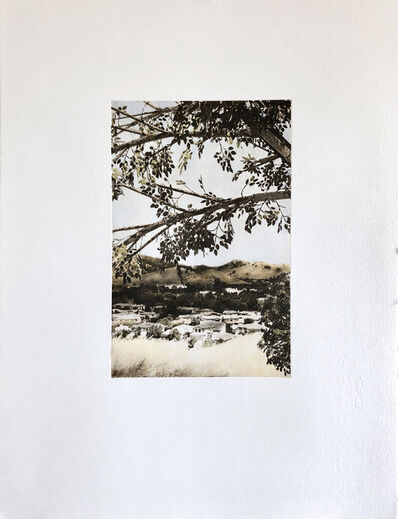 Mary V. Marsh, 'Fauxliage: Paradise Valley View', 2020