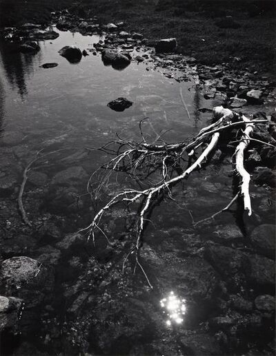 Ansel Adams, 'Branch and Creek', 1947