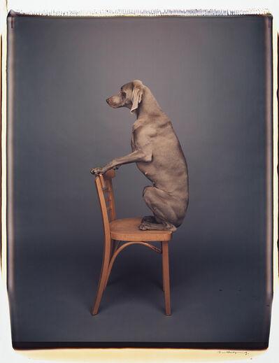 William Wegman, 'Chair Piece', 1991