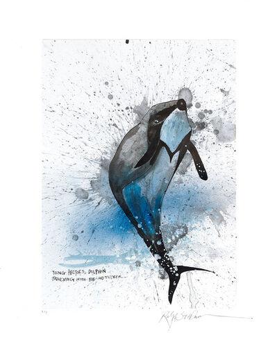 Ralph Steadman, 'Hector's Dolphin', 2017
