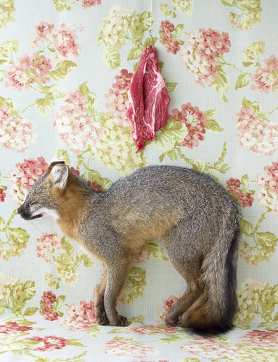 Kimberly Witham, 'Still Life with Steak and Fox', 2012