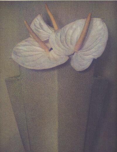 Sheila Metzner, 'Anthuriums', 1985