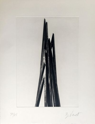 Bernar Venet, 'Vertical Angles, Print A', 2016