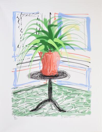 David Hockney, 'A Bigger Book, Art Edition C', 2010
