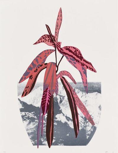 Jonas Wood, 'Untitled (Red)', 2014