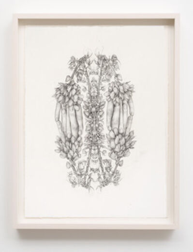 Aurel Schmidt, 'Untitled (Rorschach Flowers 1)', 2014