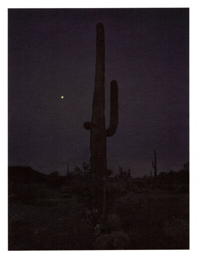 Mark Klett, 'Color Saguaros series (Saguaro in darkness with moon Nov 2018)', 2020