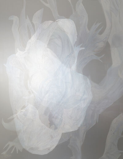 Hedwig Brouckaert, 'Illusive Flesh of Light (XVIII)', 2015