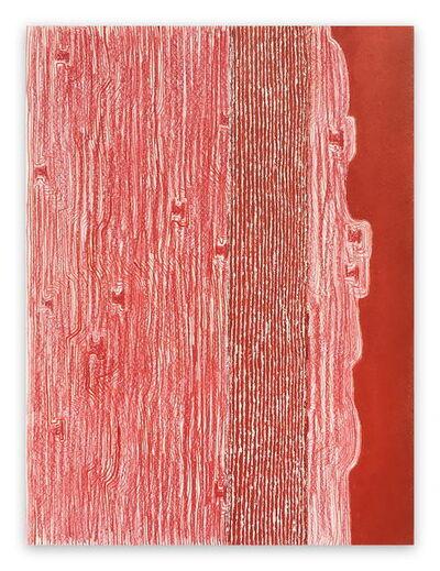 Fieroza Doorsen, 'Untitled (Id. 1282)', 2017
