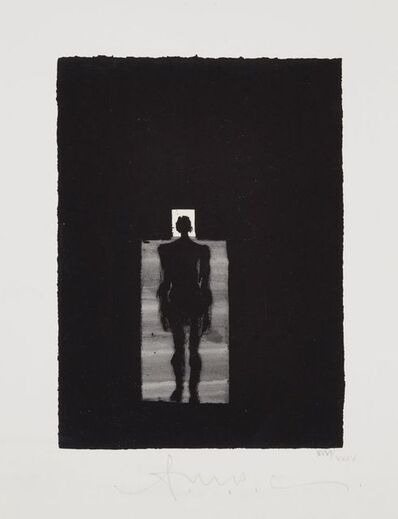Antony Gormley, 'Room', 2008