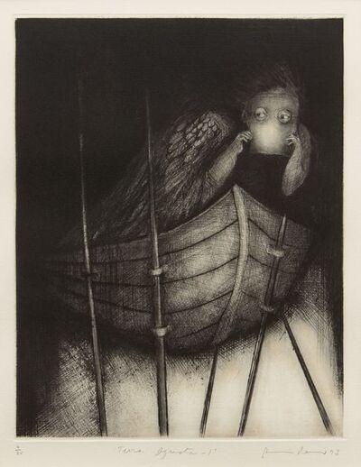 Ana Maria Pacheco, 'Terra Ignota 1', 1993