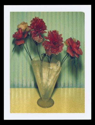 Albert Watson, 'Mexican Flowers', 1996