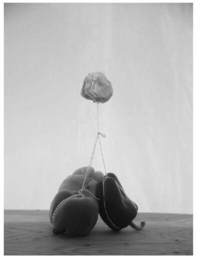 Alejandro Almanza Pereda, 'Rock peppers', 2015