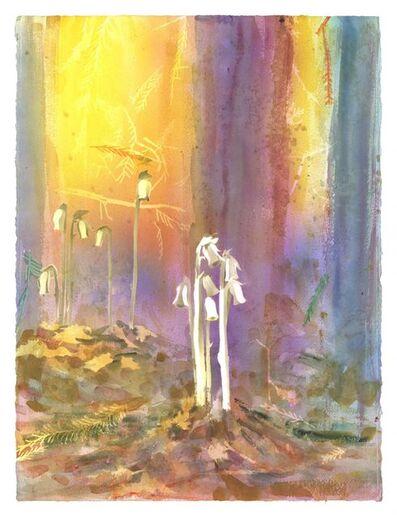Michael Krueger, 'Ghosts of Summer', 2021