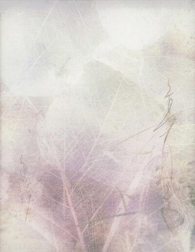 Chaco Terada, 'Veil for the Memories ', 2019
