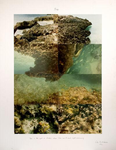 Peter Arthur Hutchinson, 'Reef ', 1991