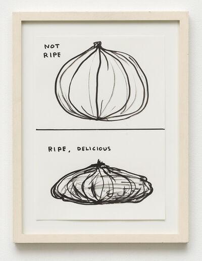 David Shrigley, 'Untitled (Not ripe. Ripe, delicious)', 2006