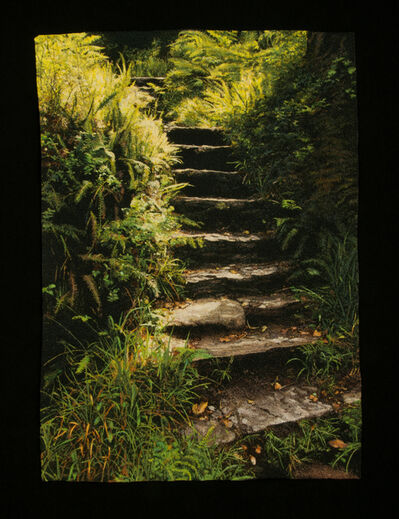 Carol Shinn, 'Forest Steps', 2020