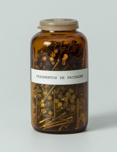 Carlos Zilio, 'Fragmentos de paisagem', 1974