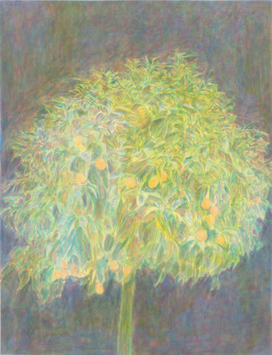 Bruno Pacheco, 'Orange tree', 2010