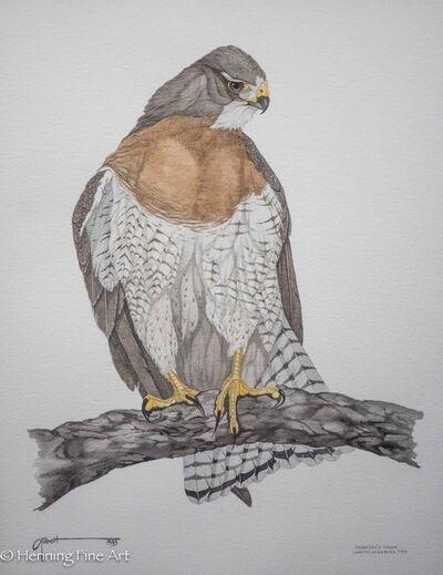 George Edward Gilbert, 'Swainson's Hawk (Laguna Atascosa, Texas)', 1983