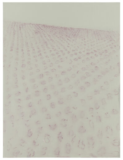 Suzanne Caporael, '704 (Opium poppy field, Sinaloa, Mexico)', 2014