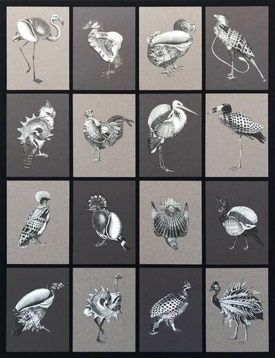 Stephen Aldrich, 'Shellbirds', 2016