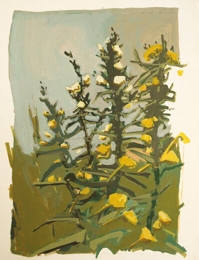 Robert Dash, 'Field Flower', ca. 1980