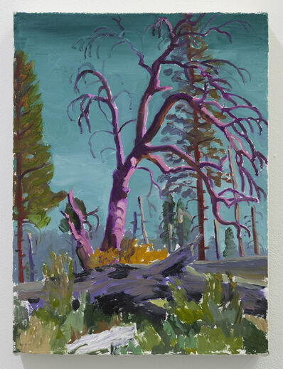 Drea Cofield, 'Burnt Forest (Yosemite)', 2019
