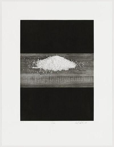 Liset Castillo, 'Rice', 2000
