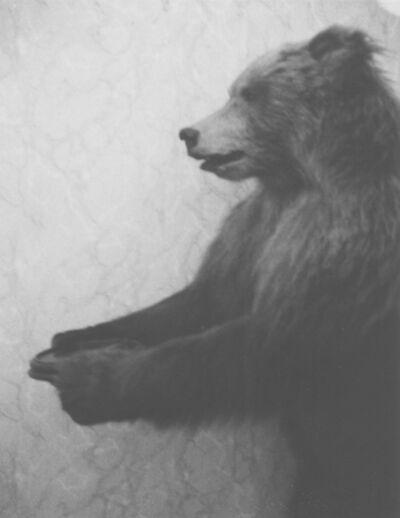 Patti Smith, 'Tolstoy's bear, Moscow', 2005