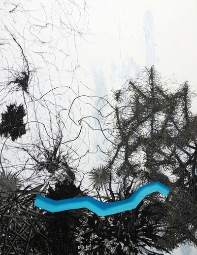 Sophia Schama, 'O31018', 2018