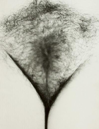 Cynthia MacAdams, 'Untitled', 1978
