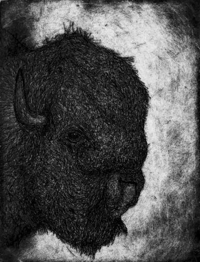 Scott Holford, 'Bison Silhouette', 2019