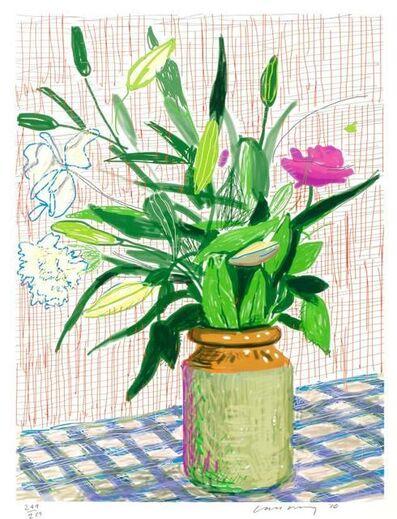 David Hockney, 'iPad drawing, Untitled 516', 2010