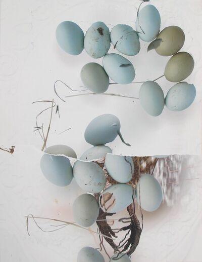 Deborah Oropallo, 'Chicken Egg Chicken (Untitled 6)'