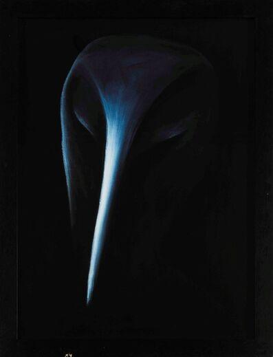 Gino De Dominicis, 'Opera obiqua', 1989