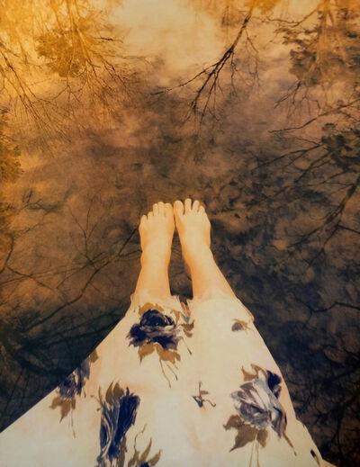 Diana H. Bloomfield, 'Reedy Creek ', 2008-2019