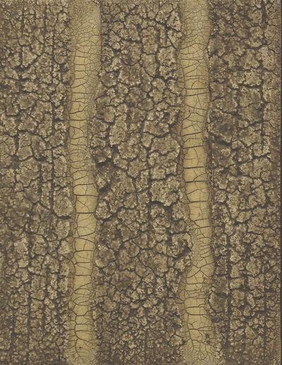 Charles Ramsburg, 'Icons of Nature #3', 2010