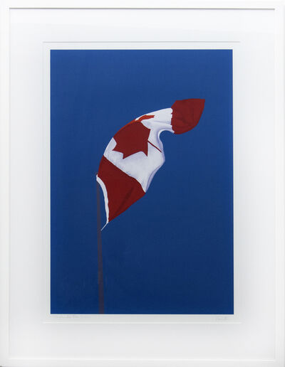 Charles Pachter, 'The Painted Flag 42/150', 1987